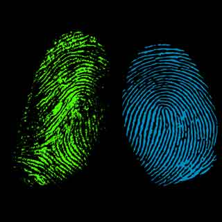 fingerprint detection patent